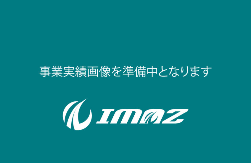 IMAZ-WEB-Business-results-img